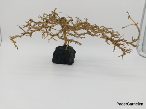 Garnelenbaum L 17x25